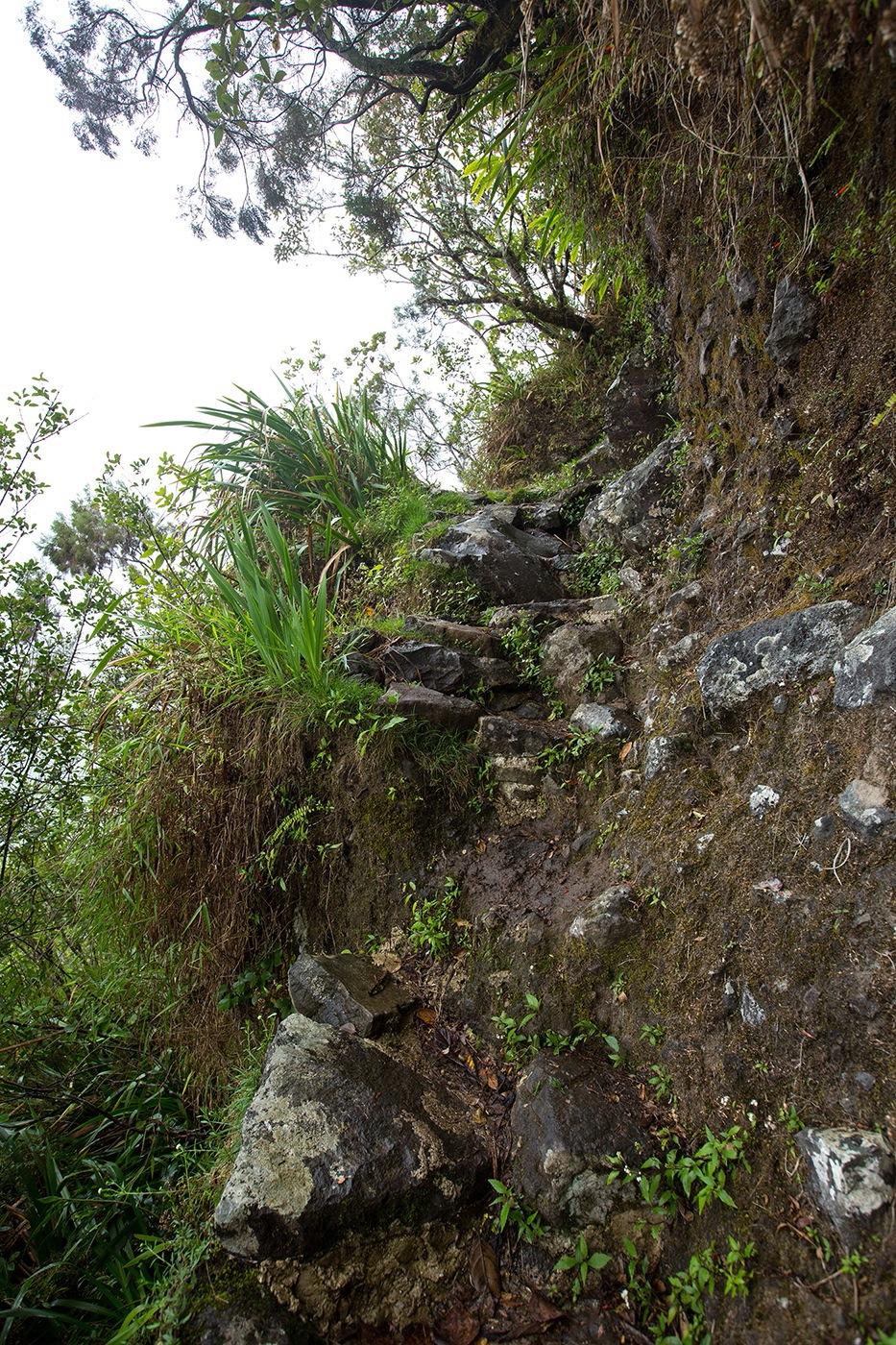 Chemin vertical