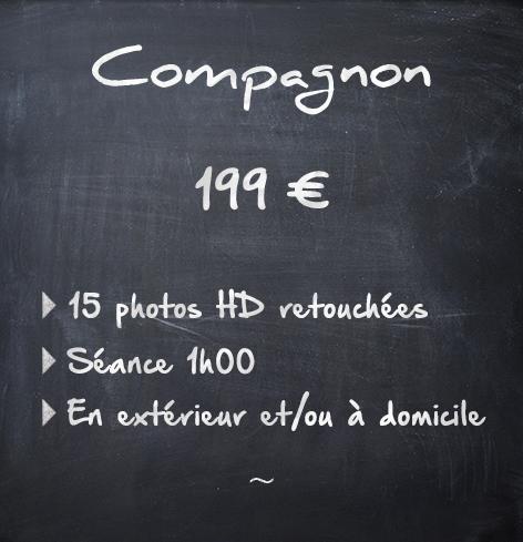 Animaux Compagnon