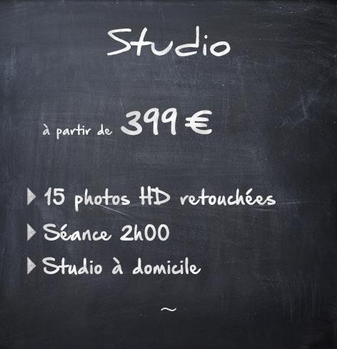 Animaux Studio