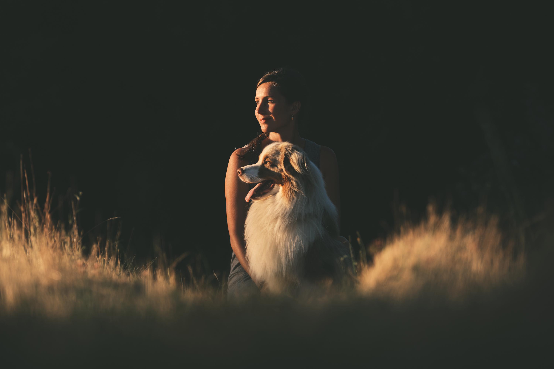 photographe-animalier-chien-canin-poitiers-guillaume-heraud-28