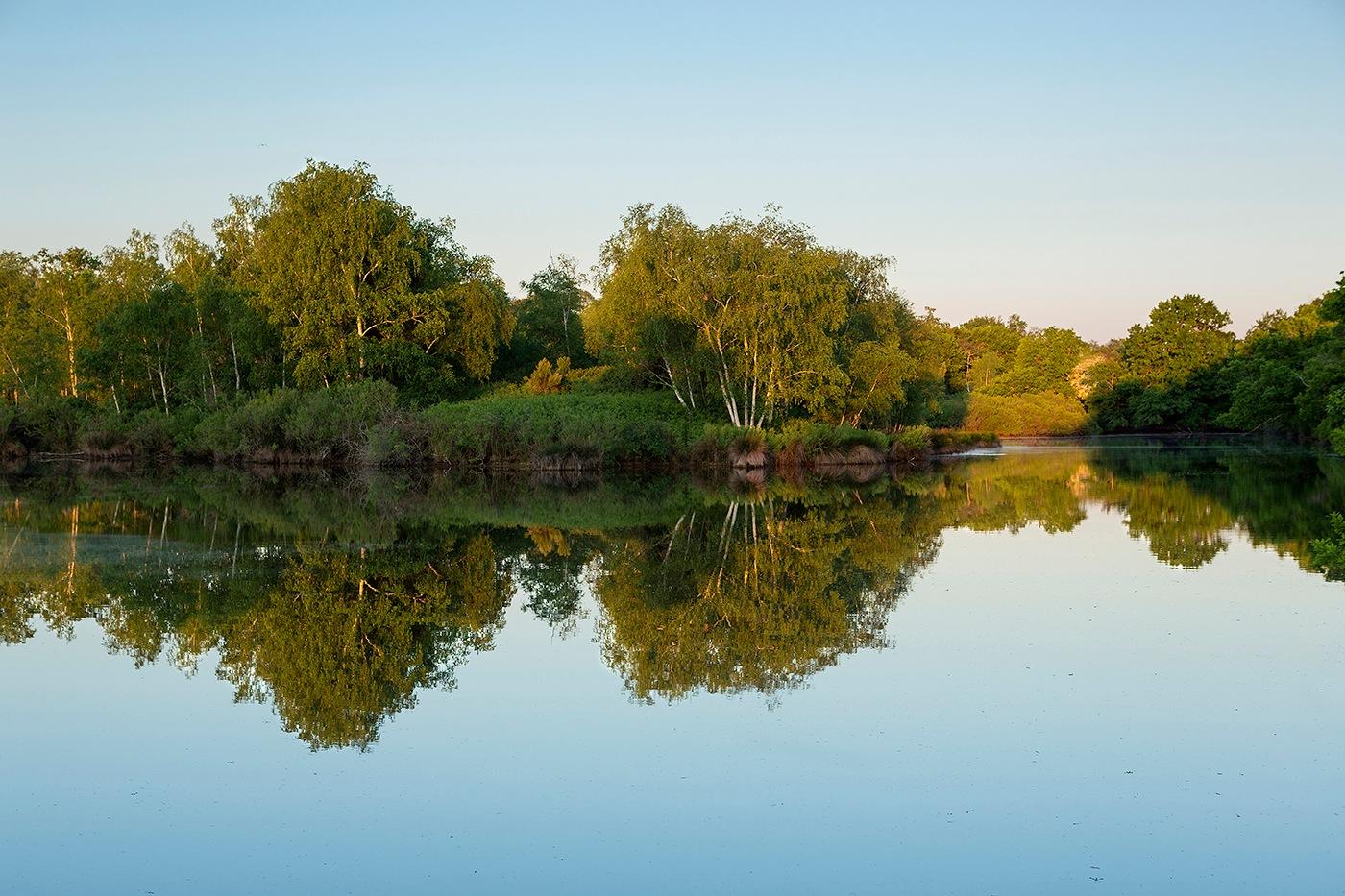 Réserve naturelle du Teich