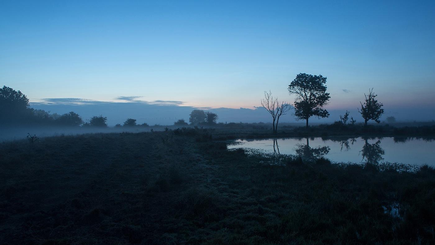 Marais Saint Agnant - étang